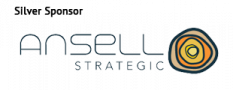 ansell strategic lg